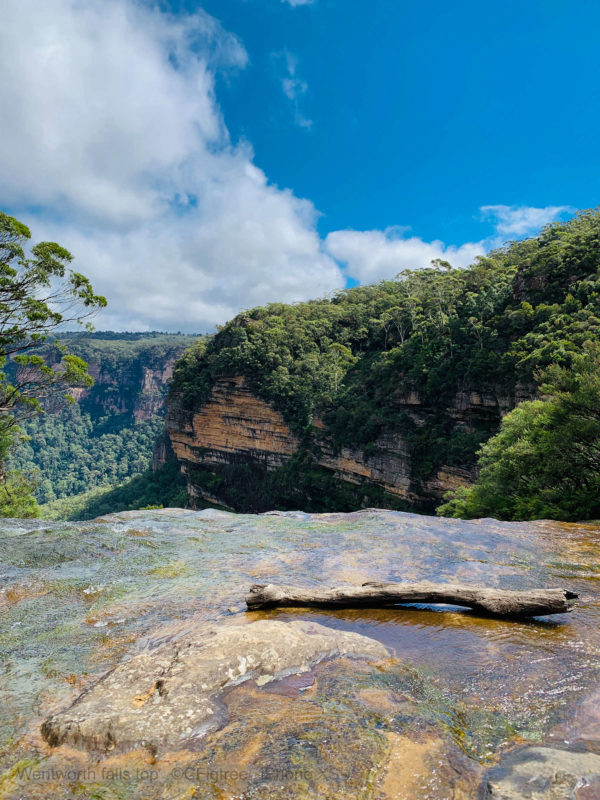 Wentworth Falls from the top