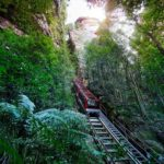 The Scenic Railaway train heading into the Jamison Valley